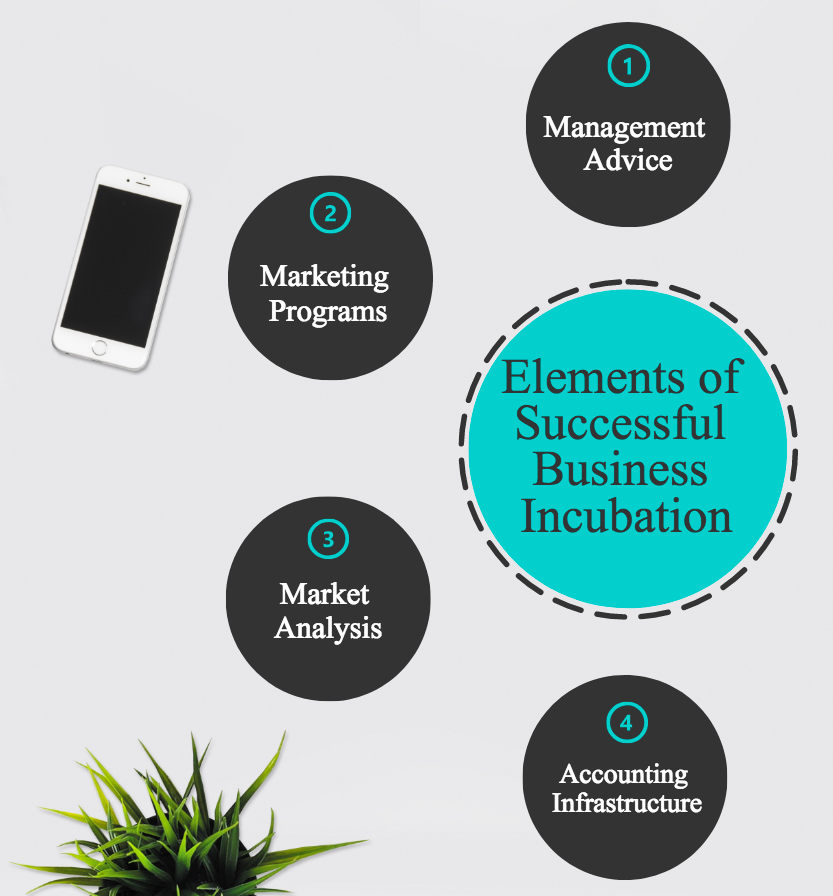 Successful elements of business incubation